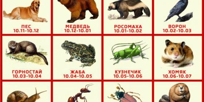 славянский гороскоп 1