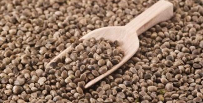 Каша из семян конопли