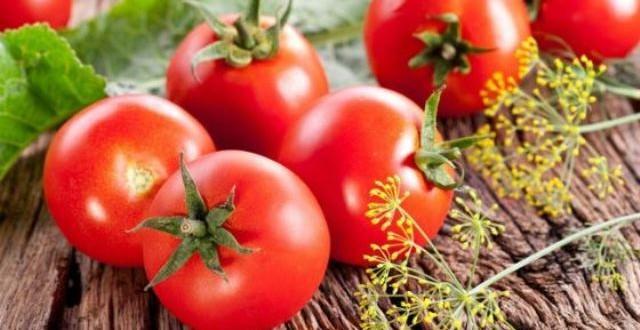 помидоры4